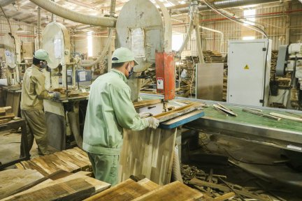 Processing wood by machinery
