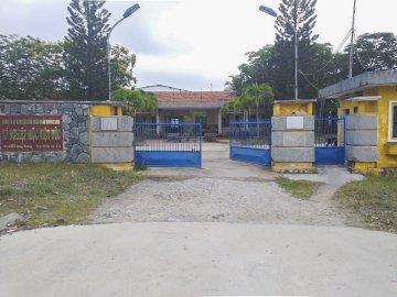 Viet Duc wood Processing Factory